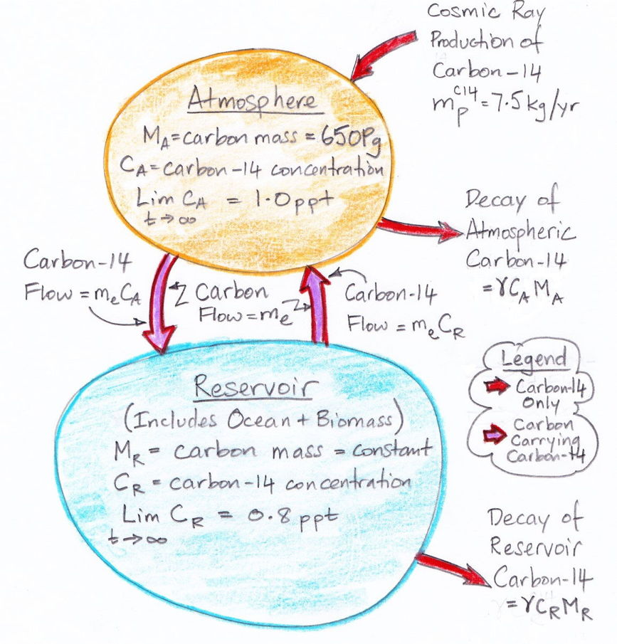 Home climate analysis carbon 14 the carbon cycle the diagram assumes that the carbon exchange between the atmosphere and the reservoir has already reached equilibrium but it does not assume that the ccuart Images